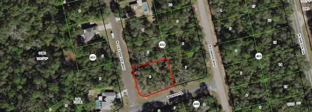 8639 N Collarette Way, Citrus Springs, FL 34434 (MLS #OM602118) :: Bustamante Real Estate
