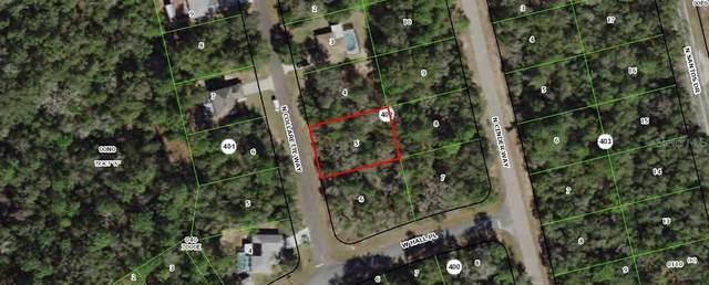8655 N Collarette Way, Citrus Springs, FL 34434 (MLS #OM602139) :: Bustamante Real Estate