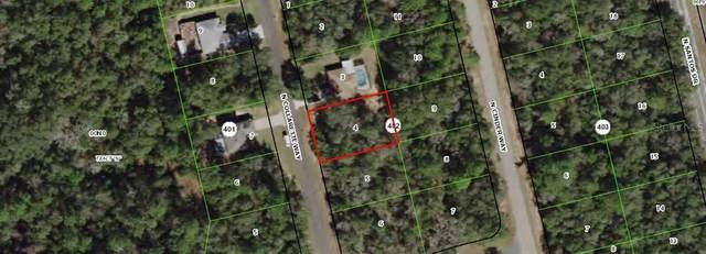 8669 N Collarette Way, Citrus Springs, FL 34434 (MLS #OM602141) :: Bustamante Real Estate