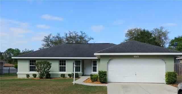 13762 SW 27 COURT Road, Ocala, FL 34473 (MLS #OM602203) :: The A Team of Charles Rutenberg Realty