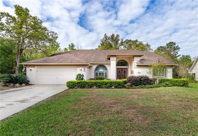 43 Hollyhock Court, Homosassa, FL 34446 (MLS #OM602244) :: The Duncan Duo Team