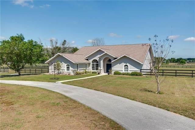 1900 NW 114TH Loop, Ocala, FL 34475 (MLS #OM602276) :: Bustamante Real Estate
