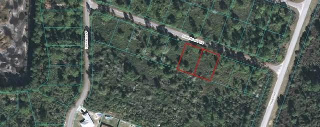 TBD Fisher Loop Lane, Ocklawaha, FL 32179 (MLS #OM602293) :: Team Bohannon Keller Williams, Tampa Properties