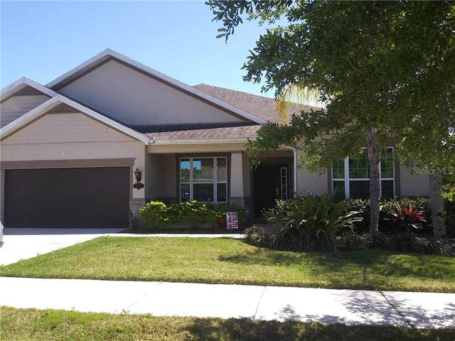 19121 Sweet Clover Lane, Tampa, FL 33647 (MLS #OM602315) :: Team Bohannon Keller Williams, Tampa Properties