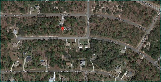 1819 W Mcneal Drive, Citrus Springs, FL 34434 (MLS #OM602344) :: The A Team of Charles Rutenberg Realty