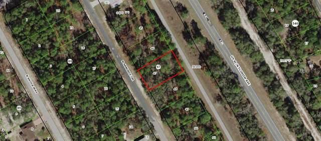 9559 N Sandree Drive, Citrus Springs, FL 34434 (MLS #OM602356) :: Team Bohannon Keller Williams, Tampa Properties