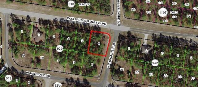 7348 N Gibralter Drive, Citrus Springs, FL 34434 (MLS #OM602358) :: Rabell Realty Group