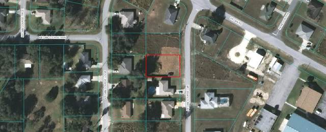 Pecan Course Circle, Ocala, FL 34472 (MLS #OM602462) :: Your Florida House Team