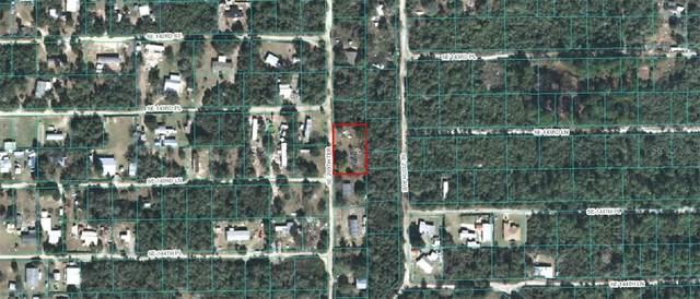 14375 SE 209TH Terrace, Umatilla, FL 32784 (MLS #OM602693) :: Griffin Group