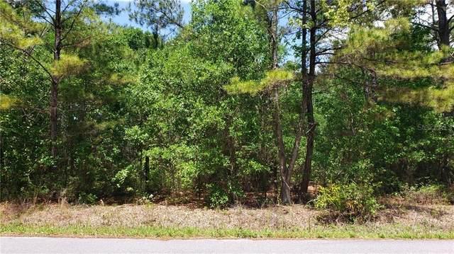 000 Oak Lane Way, Ocala, FL 34472 (MLS #OM602917) :: Premier Home Experts