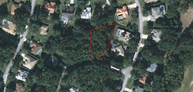 0 SW 91 Loop, Dunnellon, FL 34432 (MLS #OM603186) :: Carmena and Associates Realty Group