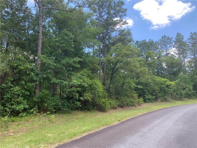 LOT 7 NE 43 LANE Road, Silver Springs, FL 34488 (MLS #OM603280) :: KELLER WILLIAMS ELITE PARTNERS IV REALTY