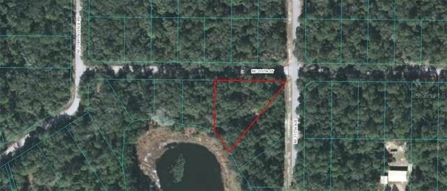 TBD NE 239TH Street, Fort Mc Coy, FL 32134 (MLS #OM603354) :: The Kardosh Team