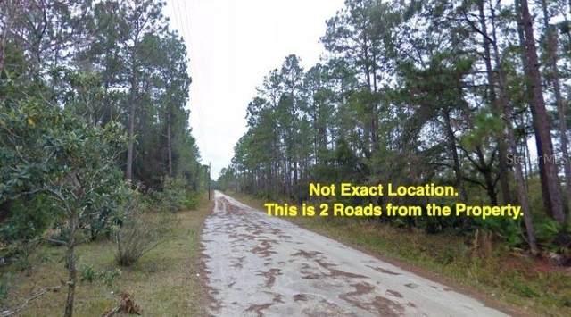 13395 NE 65TH Court, Citra, FL 32113 (MLS #OM603463) :: Pepine Realty