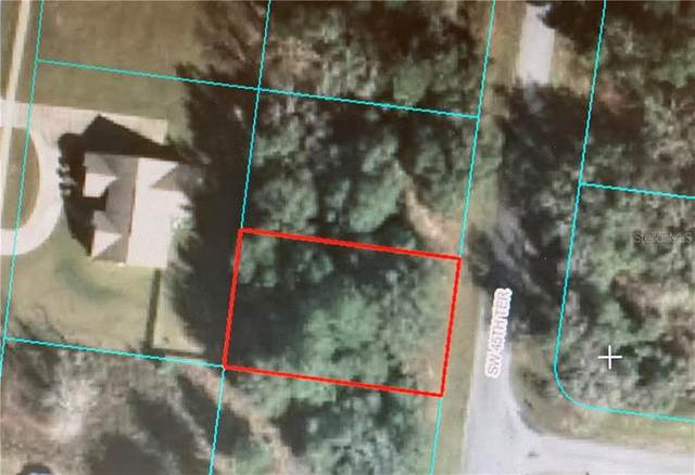 TDB SW 45 TERRACE, Ocala, FL 34473 (MLS #OM603472) :: The Duncan Duo Team