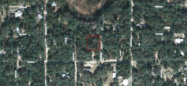1 Se 187Th Ter, Ocklawaha, FL 32179 (MLS #OM603613) :: Zarghami Group