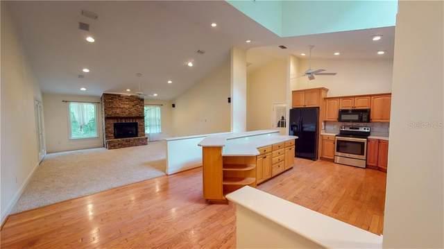 12940 SW Williston Road, Micanopy, FL 32667 (MLS #OM603678) :: Bustamante Real Estate