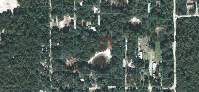 Se 186Th Ave, Ocklawaha, FL 32179 (MLS #OM603735) :: Zarghami Group