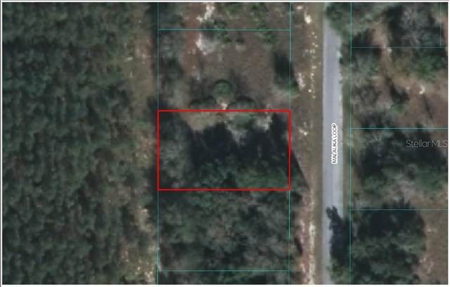 TBD Malauka Loop, Ocklawaha, FL 32179 (MLS #OM603823) :: Carmena and Associates Realty Group