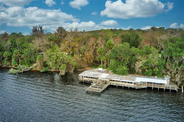 140 Shell Harbour Way, Satsuma, FL 32189 (MLS #OM603835) :: Alpha Equity Team