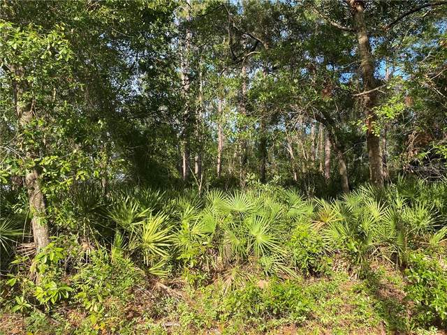 0 NE 114TH Avenue, Fort Mc Coy, FL 32134 (MLS #OM603943) :: BuySellLiveFlorida.com