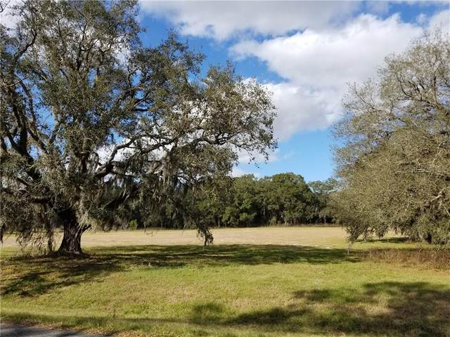 0000 SE 101ST Street, Ocala, FL 34480 (MLS #OM604218) :: Mark and Joni Coulter | Better Homes and Gardens