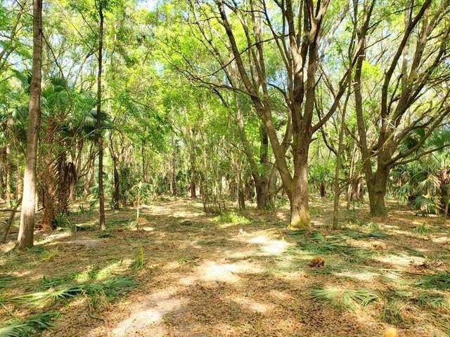 5.5ac NE 301 Highway, Citra, FL 32113 (MLS #OM604267) :: Pepine Realty