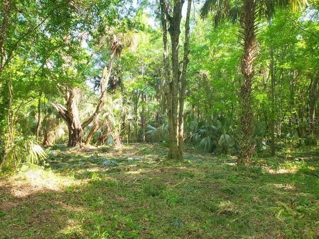 6ac NE 301 Highway, Citra, FL 32113 (MLS #OM604268) :: Pepine Realty