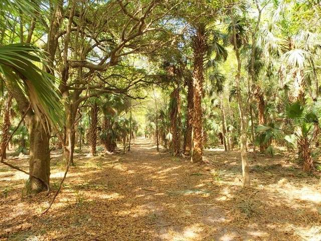 3.9ac NE 301 Highway, Citra, FL 32113 (MLS #OM604270) :: Pepine Realty