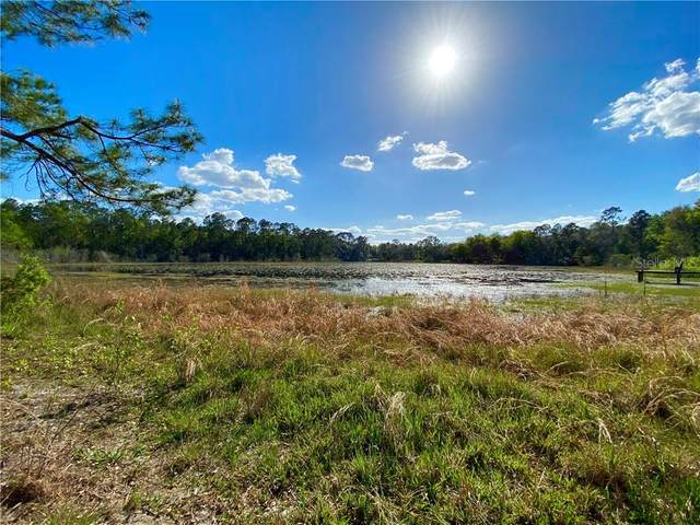 TBD SE 179TH Avenue, Silver Springs, FL 34488 (MLS #OM604300) :: Baird Realty Group