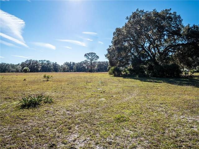 11851 NE 222ND Street, Fort Mc Coy, FL 32134 (MLS #OM604301) :: Premium Properties Real Estate Services
