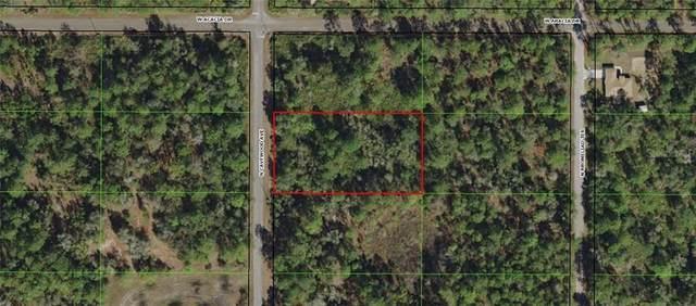 9381 N Cavewood Avenue, Crystal River, FL 34428 (MLS #OM604323) :: Premium Properties Real Estate Services