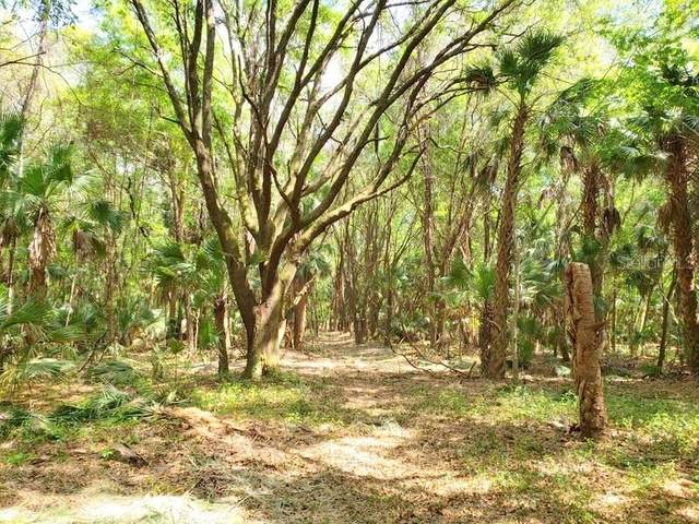 10ac NE 301 Highway, Citra, FL 32113 (MLS #OM604329) :: Zarghami Group