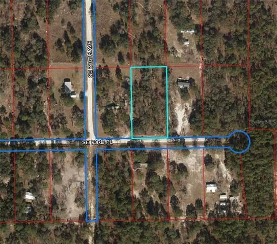 21691 SE 73RD Place, Morriston, FL 32668 (MLS #OM604514) :: Pepine Realty