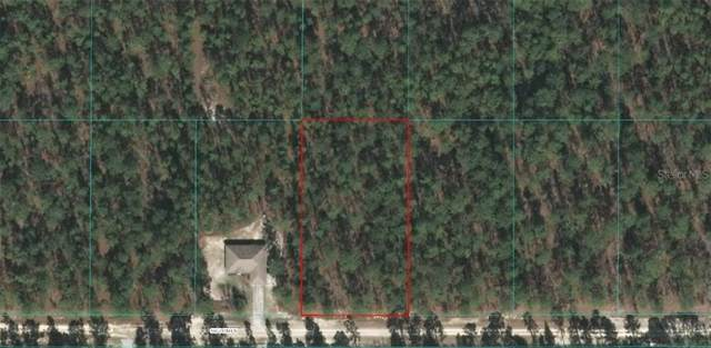 0 SW 76 Lane, Dunnellon, FL 34432 (MLS #OM604669) :: Team Buky