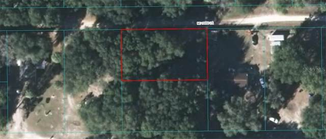 2930 NE 163RD Lane, Citra, FL 32113 (MLS #OM605140) :: CGY Realty