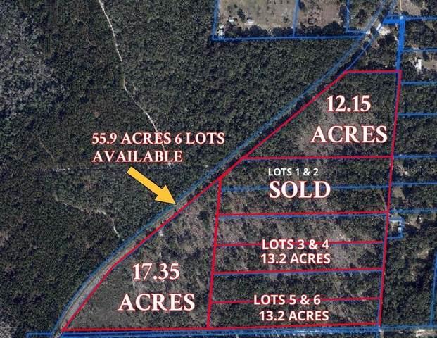 Address Not Published, Melrose, FL 32666 (MLS #OM605354) :: Bustamante Real Estate