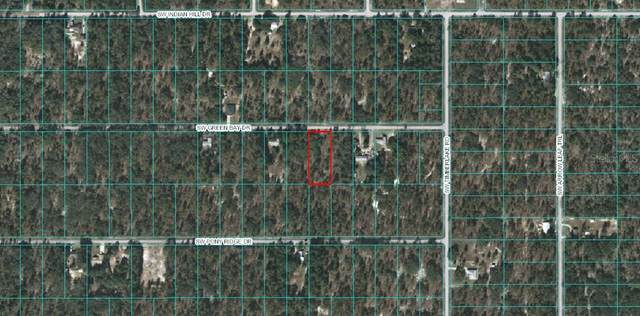 Lot 6 - 00 SW Green Bay Drive, Dunnellon, FL 34431 (MLS #OM605359) :: Zarghami Group
