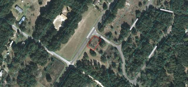 Bay Court Bay Court Pass, Ocklawaha, FL 32179 (MLS #OM605475) :: Zarghami Group