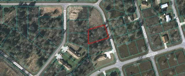 Juniper Loop, Ocala, FL 34472 (MLS #OM605488) :: Baird Realty Group