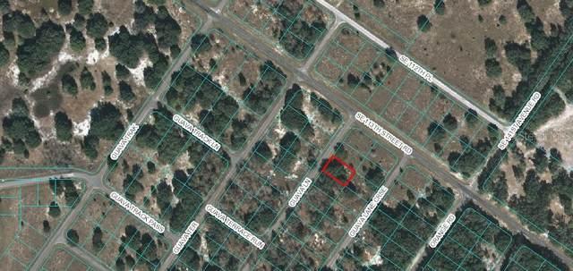 Lot 3 Guava Lane, Ocklawaha, FL 32179 (MLS #OM605500) :: The Figueroa Team