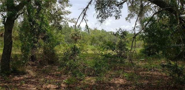 11751 SE County Road 337, Dunnellon, FL 34431 (MLS #OM605503) :: McConnell and Associates