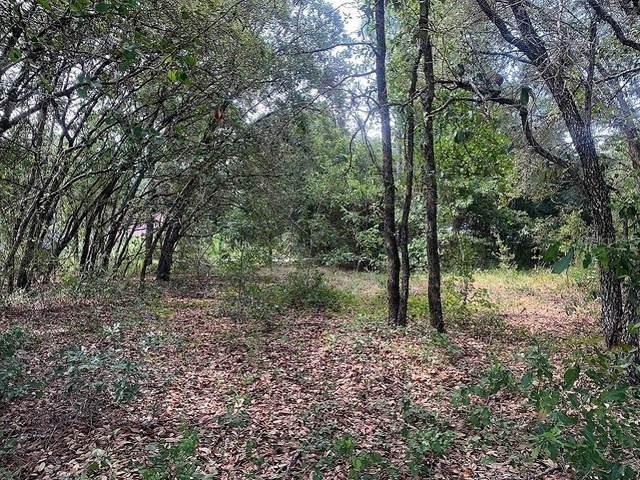 TBD Marion Oaks Trail, Ocala, FL 34473 (MLS #OM605512) :: Pepine Realty