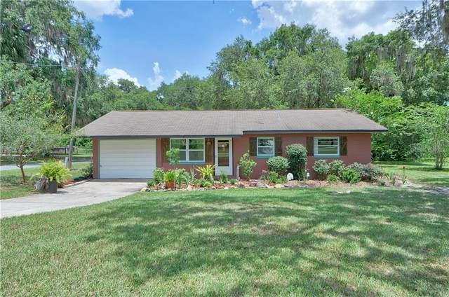 14601 SE 107TH Terrace, Summerfield, FL 34491 (MLS #OM605516) :: The Figueroa Team