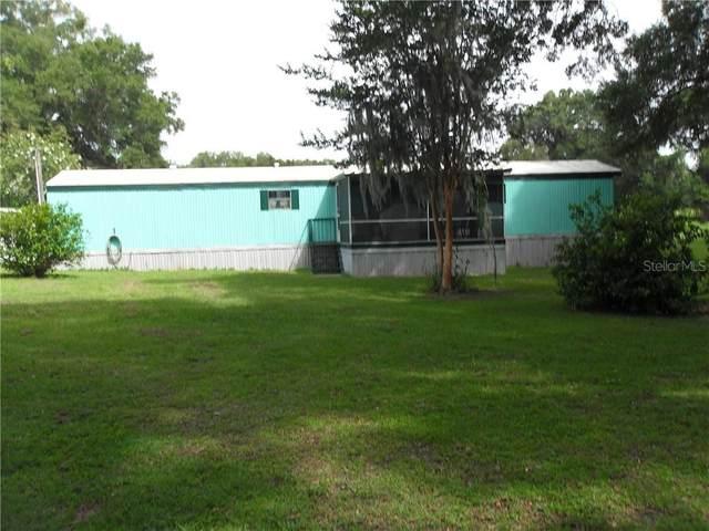 8035 NE 33RD Court, Anthony, FL 32617 (MLS #OM605517) :: Delta Realty Int