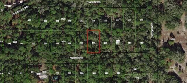 2827 W Sunkist Lane, Dunnellon, FL 34433 (MLS #OM605560) :: Southern Associates Realty LLC