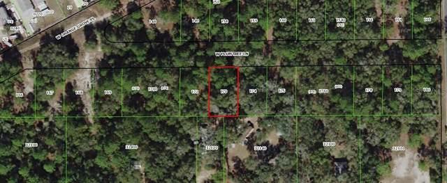 2618 W Plumtree Lane, Dunnellon, FL 34433 (MLS #OM605562) :: Southern Associates Realty LLC