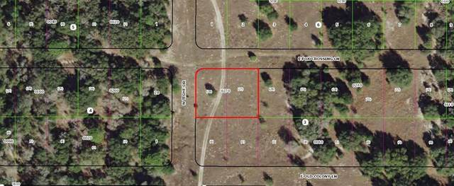 2190 E Fox Crossing Lane, Inverness, FL 34453 (MLS #OM605568) :: Griffin Group