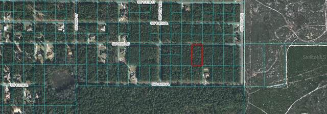 TBD SW 115 TH Street, Ocala, FL 34476 (MLS #OM605691) :: Rabell Realty Group