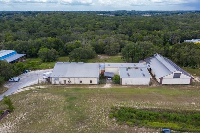21820 State Road 46, Mount Dora, FL 32757 (MLS #OM605706) :: Lockhart & Walseth Team, Realtors